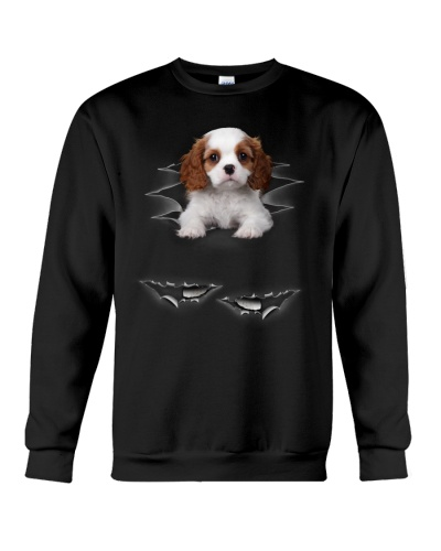 Cavalier King Charles Spaniel Torn Effect