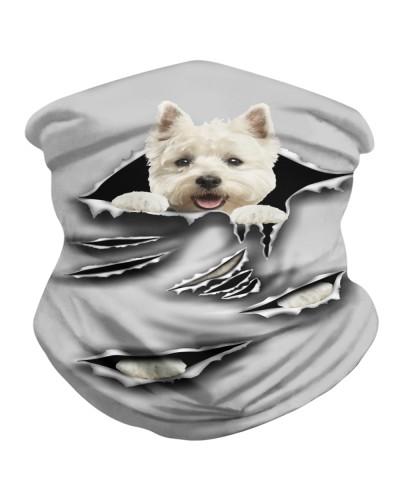 West Highland White Terrier-Scratch1-BDN
