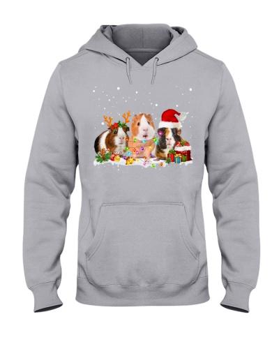 Guinea Pig-Snow-Christmas