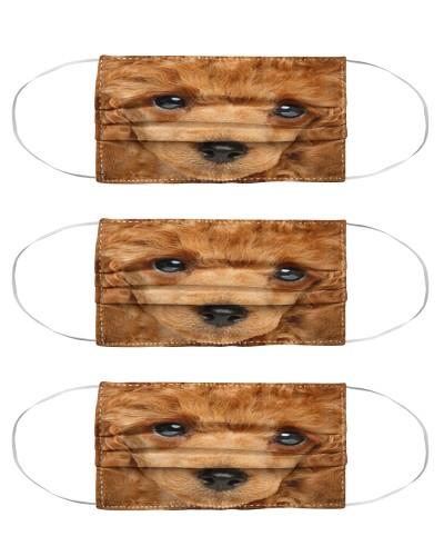 Poodle 1 Face