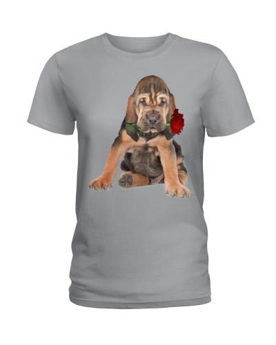Bloodhound-Rose