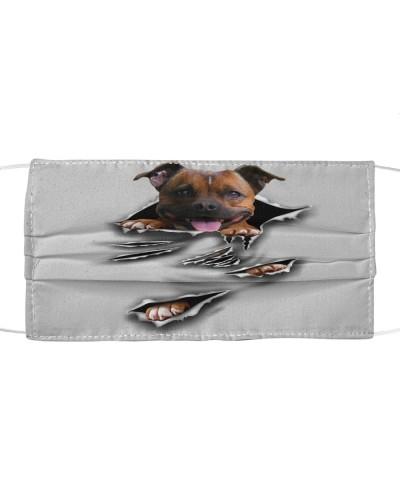 Staffordshire Bull Terrier-Scratch1-FM