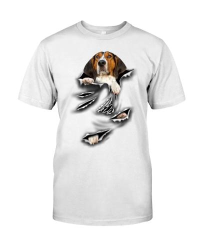 Treeing Walker Coonhound-Scratch