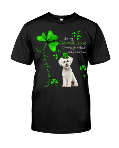 My Lucky Charm is Bichon Frise
