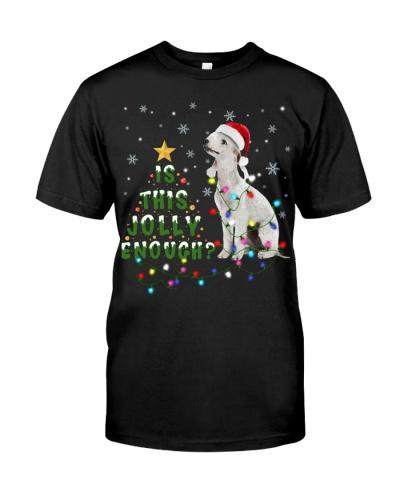 Bedlington Terrier-Jolly