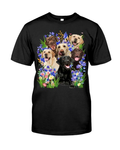 Labrador Retriever Purple Flowering Shrubs