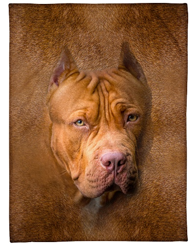 American Pit Bull Terrier Face 3D