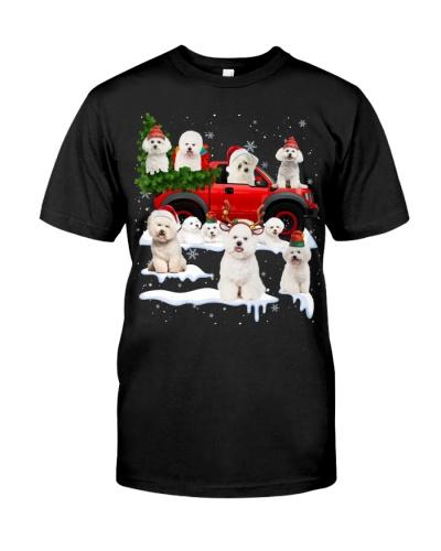 Bichon Frise-Christmas Car