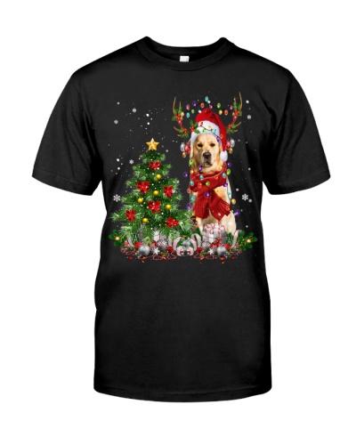 Golden Retriever-Reindeer-Christmas