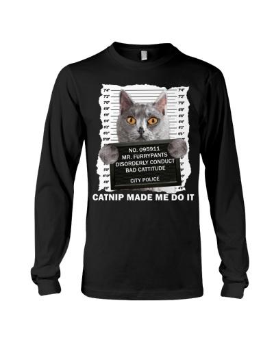 Chartreux Cat - Catnip