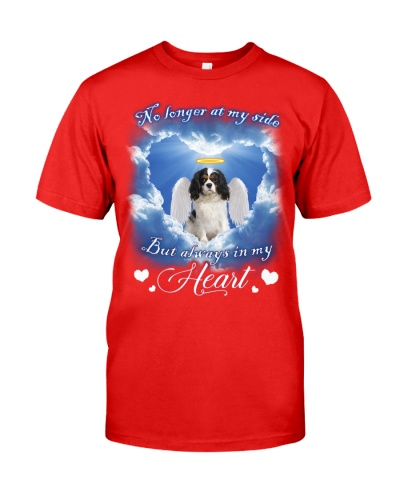 Cavalier King Charles Spaniel-Angel