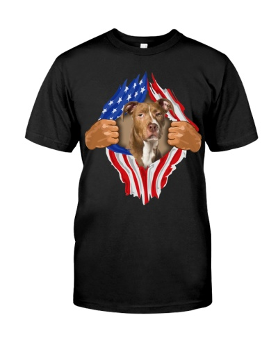 American Pit Bull Terrier2-Torn-Flag USA