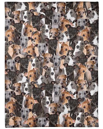 Italian Greyhound Full Face