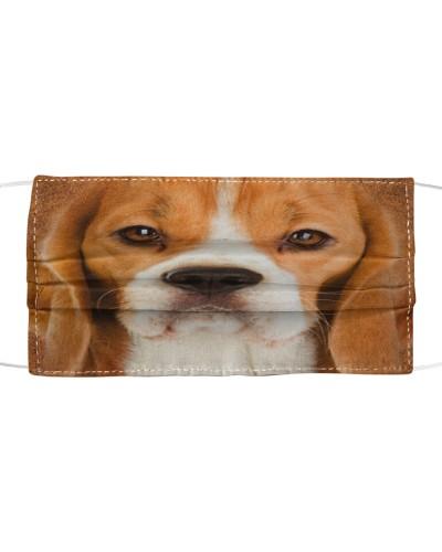 Beagle Lovely Face
