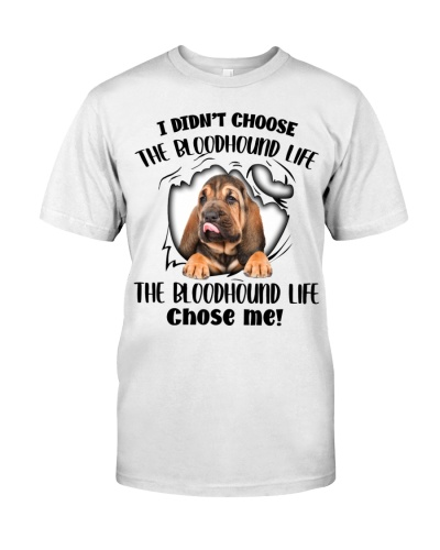 The Bloodhound Life Chose Me