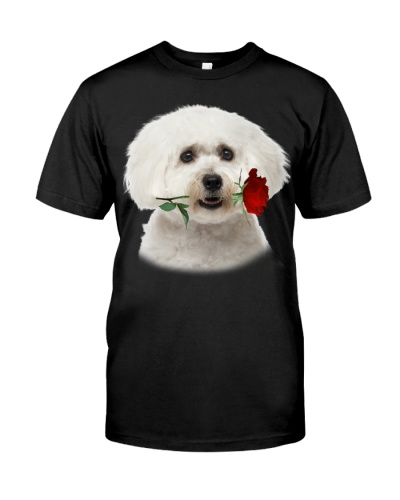 Maltese With Rose Branch