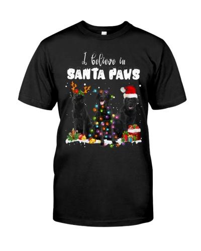 Black Labrador-Santa Paws