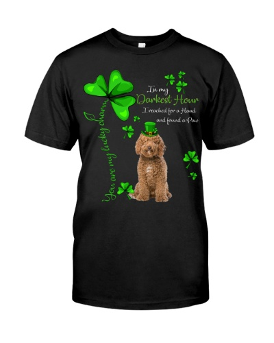 My Lucky Charm is Labradoodle