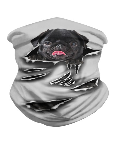 Black Pug-Scratch-BDN