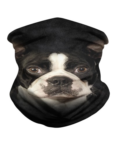 Boston Terrier Face 3D BDN