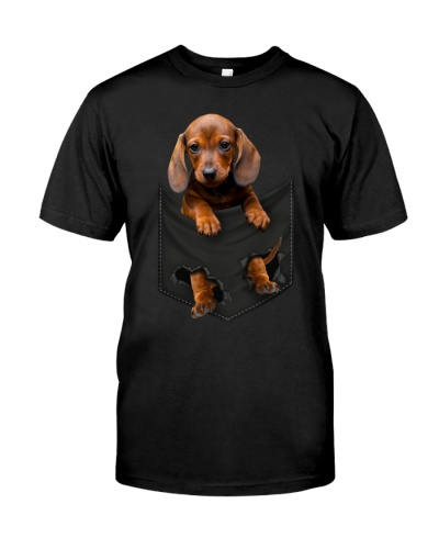 Dachshund-Pocket