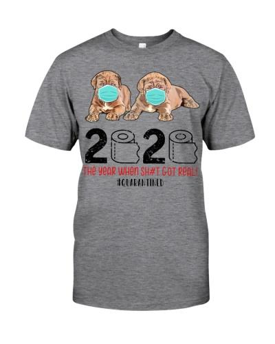 Neapolitan Mastiff 2020 Quarantined