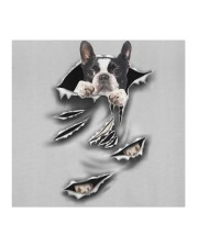 Boston Terrier-Scratch-FM Cloth face mask aos-face-mask-coverlet-lifestyle-front-02