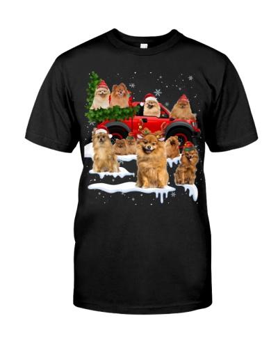 Pomeranian-Christmas Car