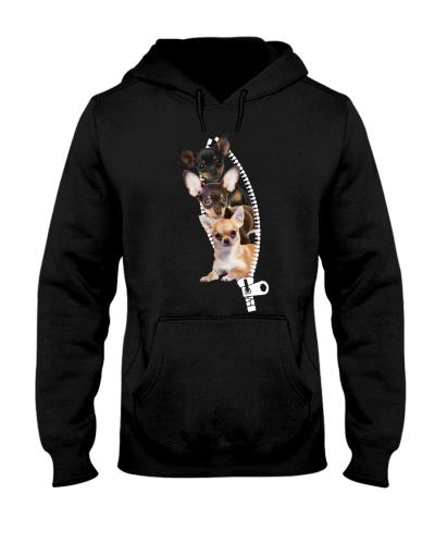 Chihuahua - Zipper