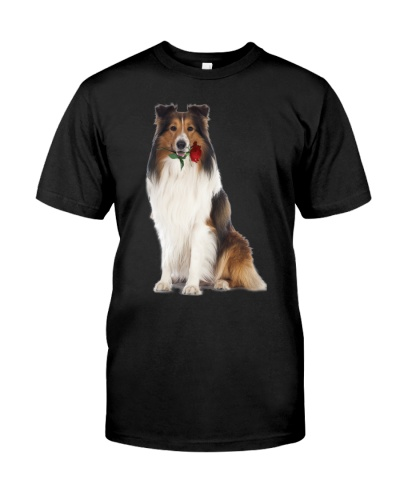 Shetland Sheepdog-Rose