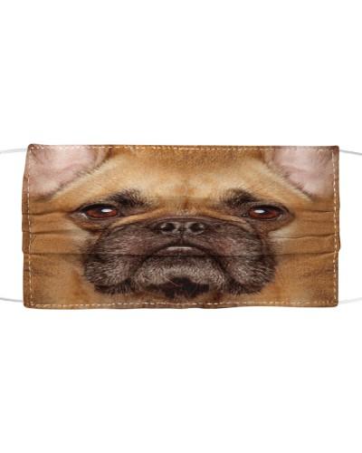 French Bulldog Lovely Face