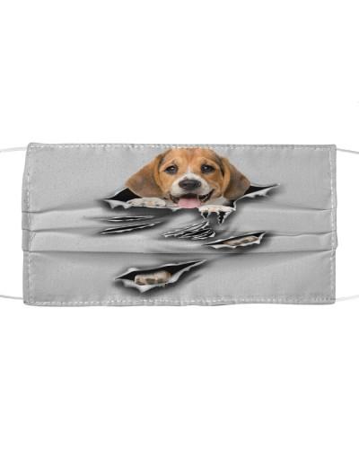 Beagle-B-Scratch-FM
