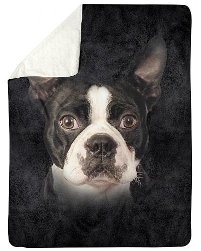Boston Terrier Face 3D