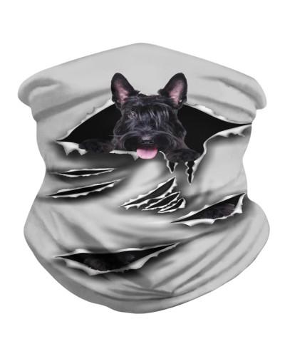 Scottish Terrier-Scratch1-BDN