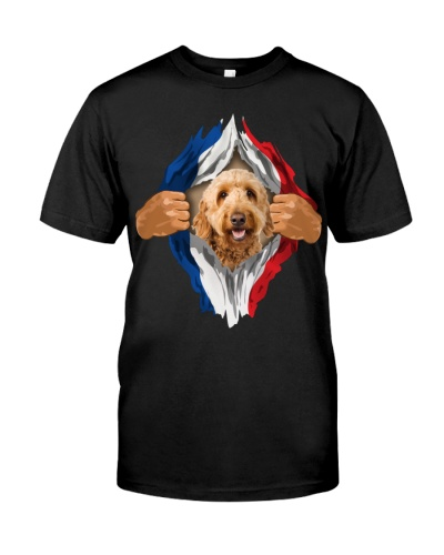 Goldendoodle-Flag of France