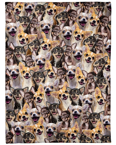 Chihuahua Full Face