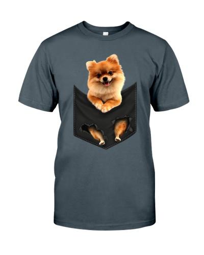 Pomeranian-Pocket