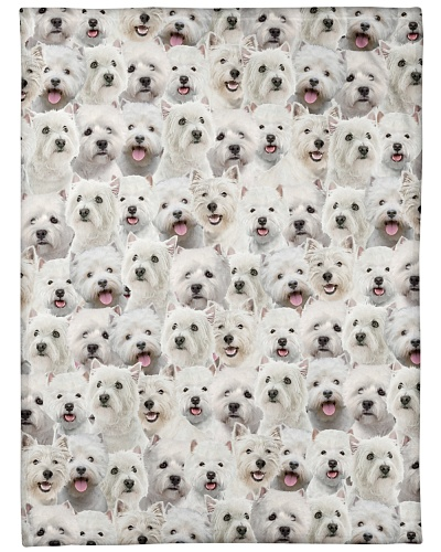 West Highland White Terrier Full Face