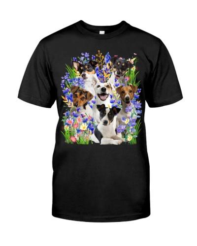 Jack Russell Terrier Purple Flowering Shrubs