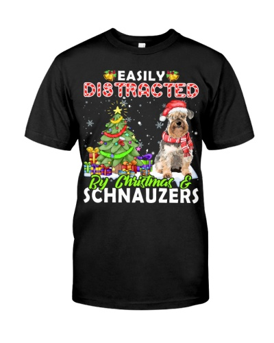 Schnauzer-Easily Distracted