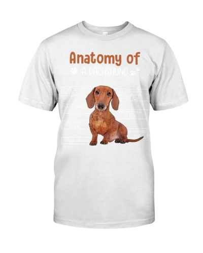 Anatomy of A Dachshund-008