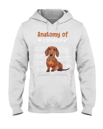 Anatomy of A Dachshund-008