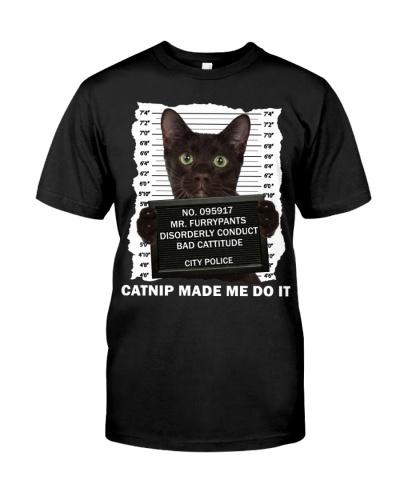 Havana Brown Cat - Catnip