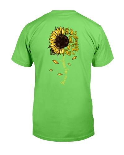 Cats-Sunflower