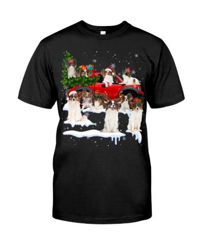 Papillon-Christmas Car