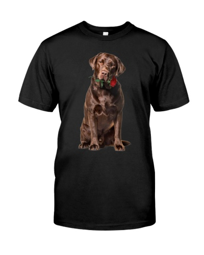 Chocolate Labrador rose