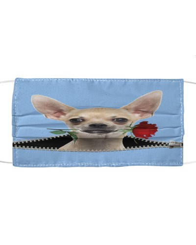 Chihuahua Rose Face