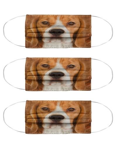 Beagle Face