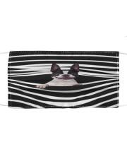 Boston Terrier Stripes FM Cloth face mask front