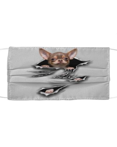 Chihuahua-B-Scratch-FM